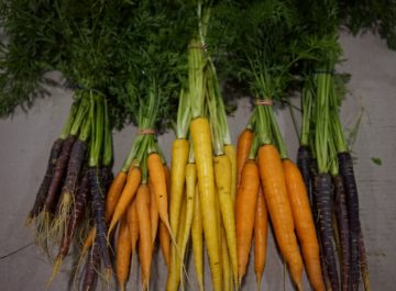 Winter veg time is here!